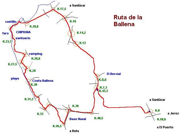 Imágenes del artículo: Ruta 12 - La Ballena (Puerto Santa María, Rota)