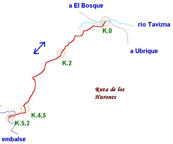 Imágenes del artículo: Ruta 16 - Los Hurones  (Ubrique)