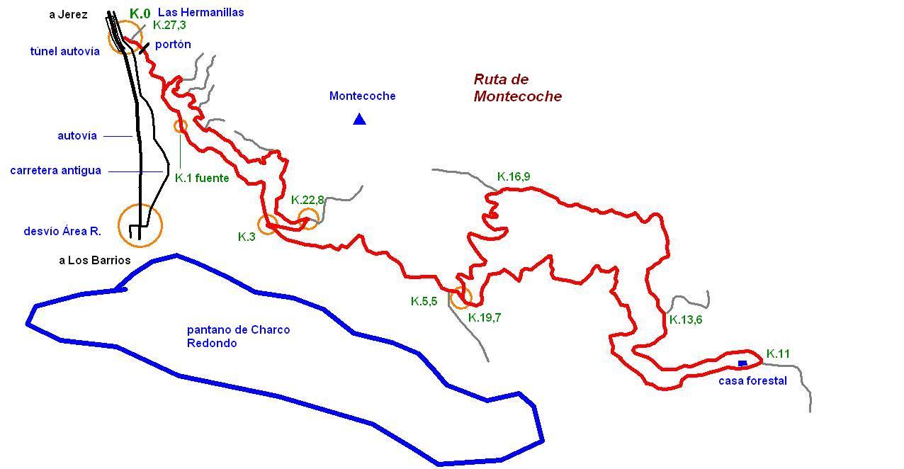 Imágenes del artículo: Ruta 42 - Montecoche (Los Barrios)